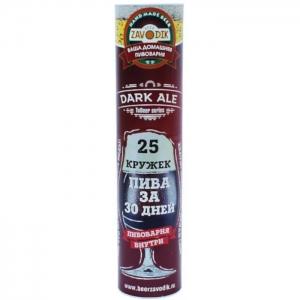 Пивоварня Beer Zavodik TuBeer series - Dark Ale